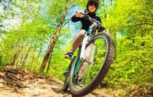Bike in the wood