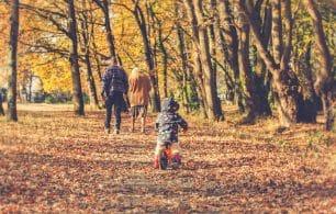 Family walk leaves