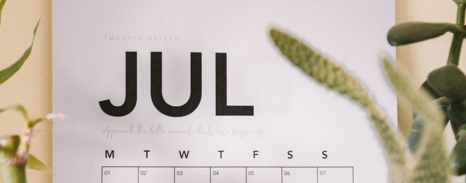 July 2019 calendar in focus